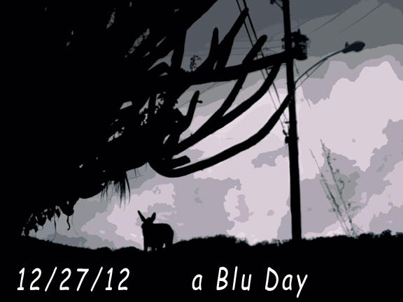 12-27-12 ablu day